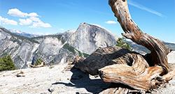 Hikes and Maps Yosemite Chic